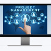 Η Κουλτούρα του Project Management