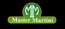mastermartini